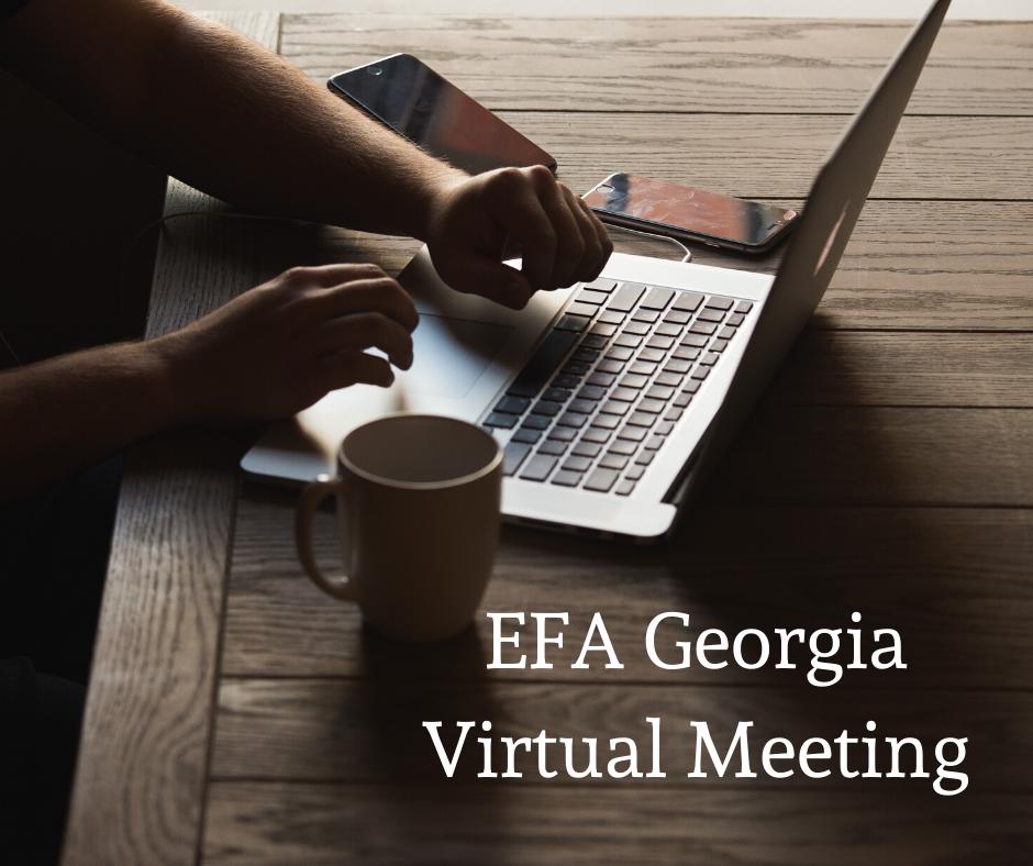efa-georgia-virtual-meeting
