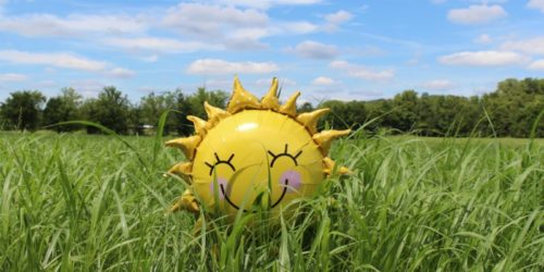 Sunshine balloon in green field